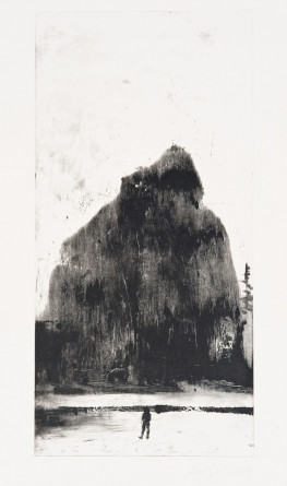 Oakland Suite: Wild Beauty 6, 2009, Monotype (ELG medium says monoprint), 8.5 x 17.5 inches, Courtesy of the artist and Elizabeth Leach Gallery