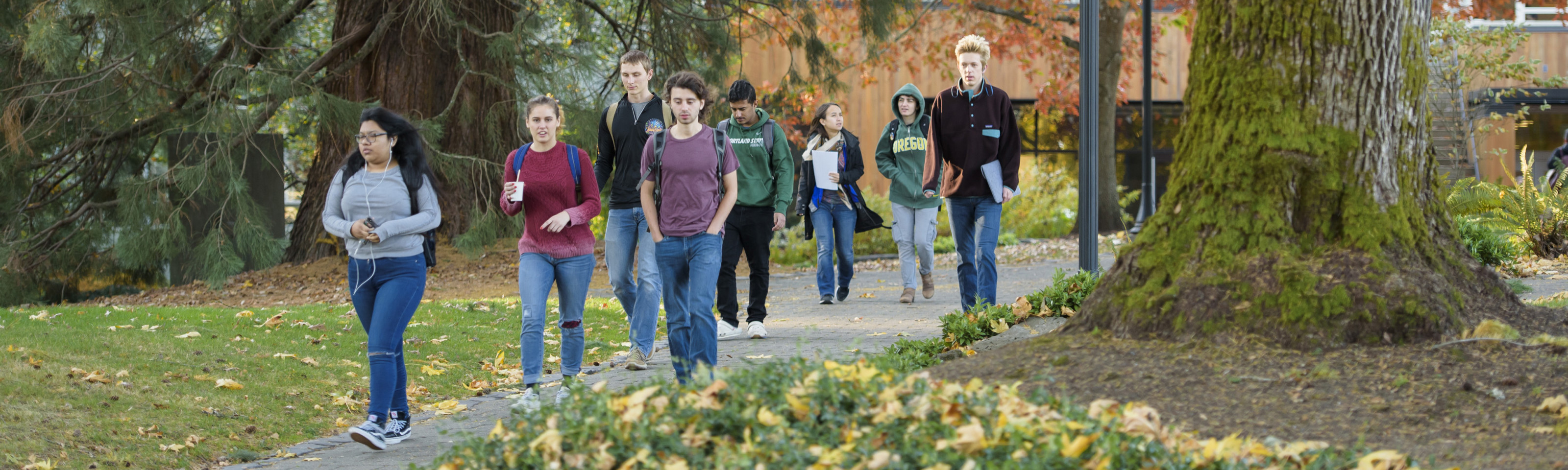 Students walking to class on a fall morning.