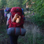 Person wearing large red backpacking backpack walks away from camera into nature. They have a coo...
