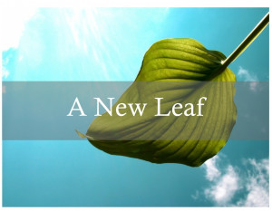 A New Leaf Meditation & Discussion Group