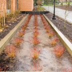 Howard Hall is designed to capture and filter storm water runoff from its roofs--just one of many...