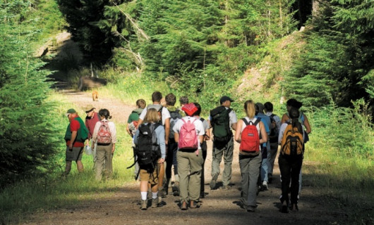 Students enter the Goat Marsh Research Natural Area on the southwestern slopes of Mount St. Helen...