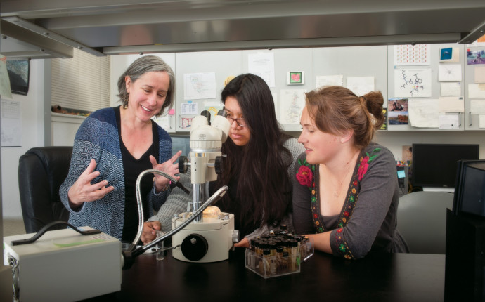 Sarai Miranda BA '20 (center) works with lab assistant Sophia Horigan BA '17 and Associate Professor of Biology Greta Binford to study properties of spiders and their venoms. (Robert Reynolds)