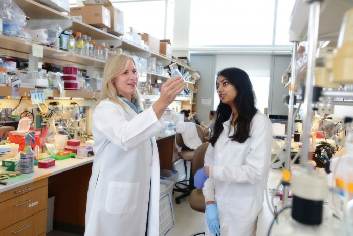 Winzeler's research lab at the University of California at San Diego employs 15 postdoctoral, graduate, and undergraduate researchers. (Credit: Carrie Rosema)