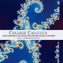 College Calculus: A One-Term Course for Students with Previous Calculus Experience