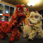 Lion dancers performed for China Night 2017
