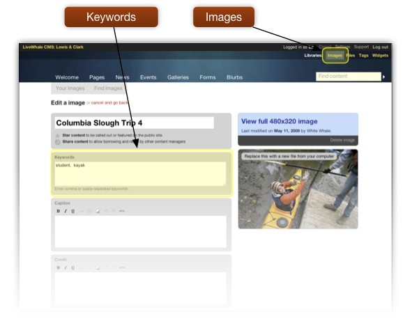The Keywords entry field in Edit Image page in LiveWhale.