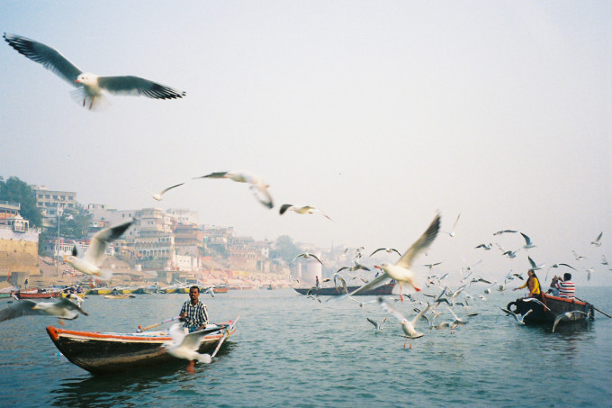 Ella Bock's winning photograph of gulls overhead on the Ganges River.